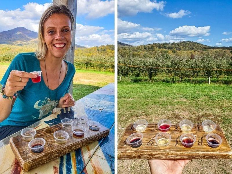 Wine tasting at Peaks of Otter Winery