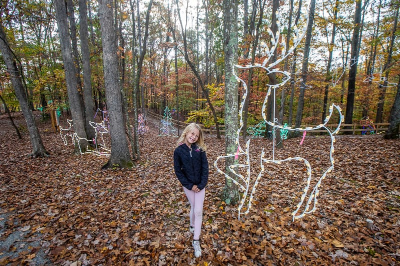 things to do with kids in roanoke va 2