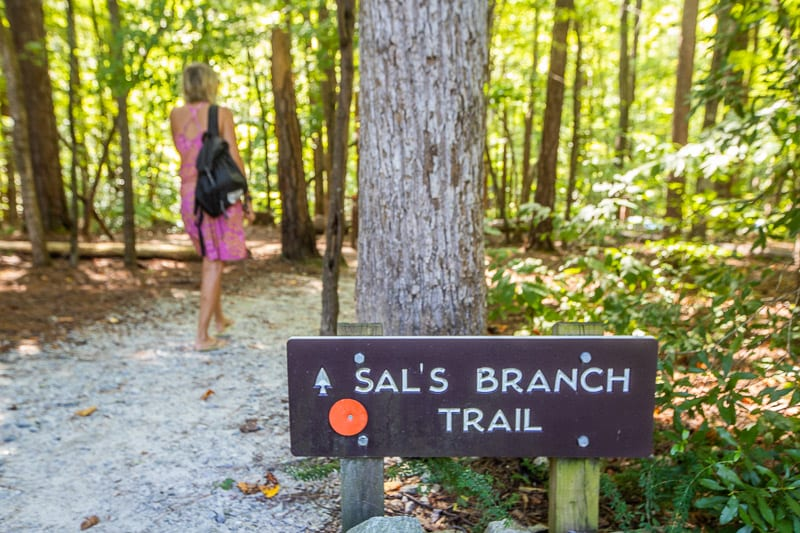 Sal's Branch Trail, William B. Umstead State Park, Raleigh, NC