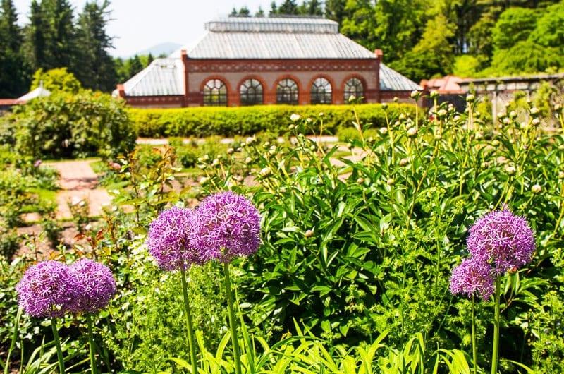 biltmore gardens 4