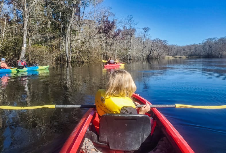 Kayaking past the cypress forest