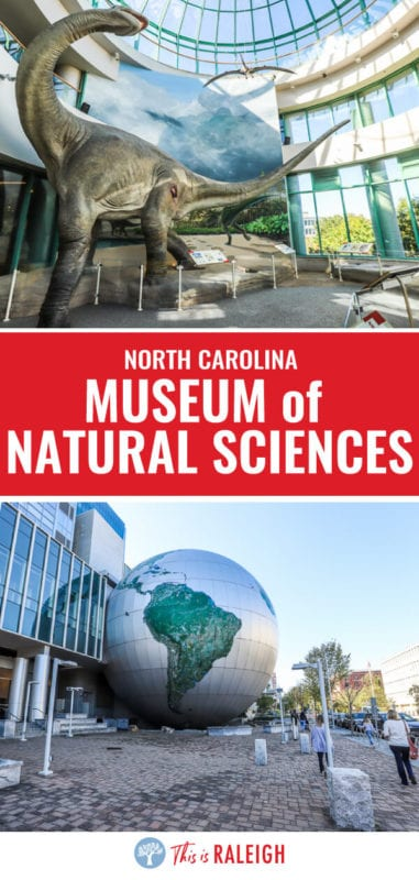 When you visit Raleigh, don't miss the North Carolina Museum of Natural Sciences. It's the most visited of the North Carolina museums and the best of Raleigh musums. It's FREE to enter and over 4 levels of amazing exhibits with something here for everyone!